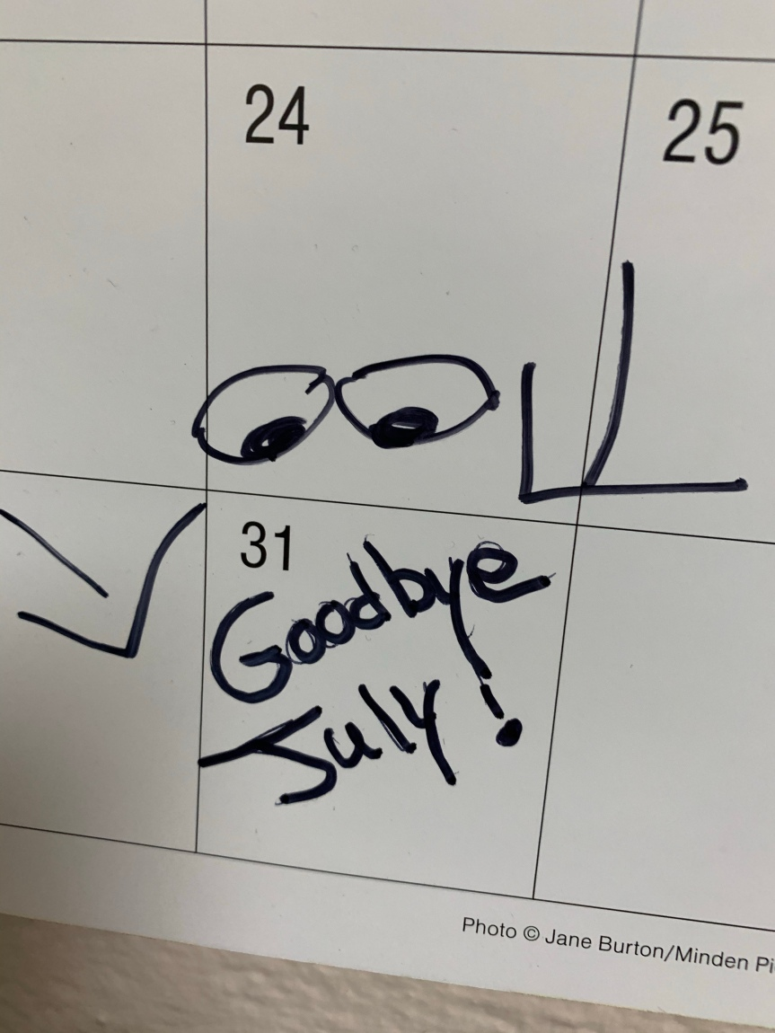 Goodbye July