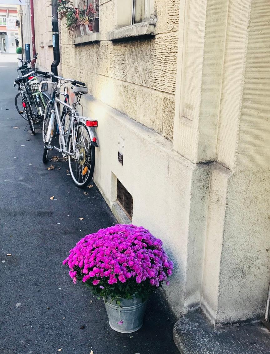 Wordless Wednesday (BeautifulSwitzerland)